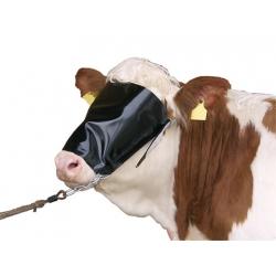 Capezza per mucche