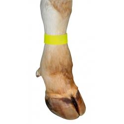 Fascetta marcatura alla caviglia GIALLA ( conf. pz10)