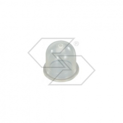 Primer ZAMA 0057003 - C1Q