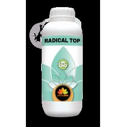 Radical top malattie radicali 250ml